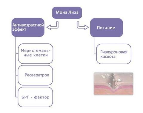 Схема действия продукта: Сыворотка Мона Лиза с микросферами гиалуроновой кислоты для омоложения кожи