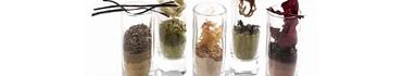 Морские водоросли в косметологии